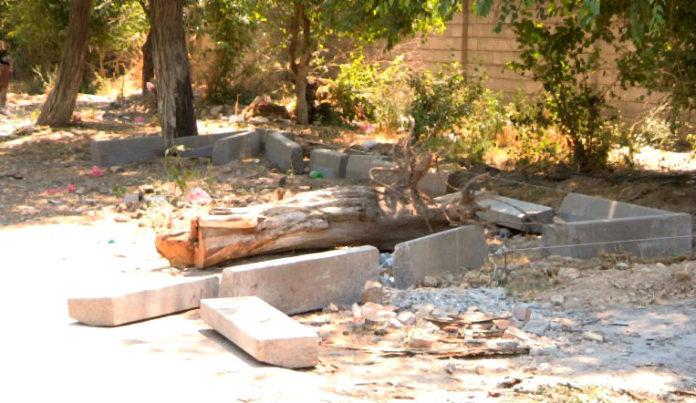 Для установки евро-контейнеров вырубают деревья