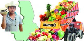Почти 70% фруктов и овощей на прилавках Шымкента привозные