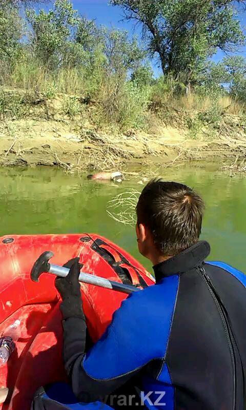 Спасатели нашли тело утонувшего в Сырдарье молодого человека