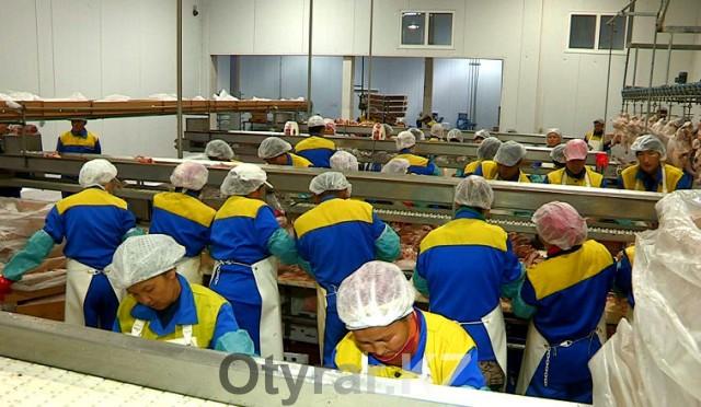 Сегодня на производстве трудится более 400 человек