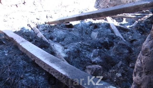 В Арысском районе поджоги продолжаются