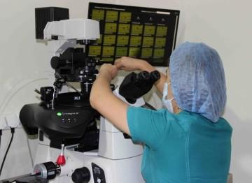 Врачи-репродуктологи назвали основные причины развития бесплодия в ЮКО