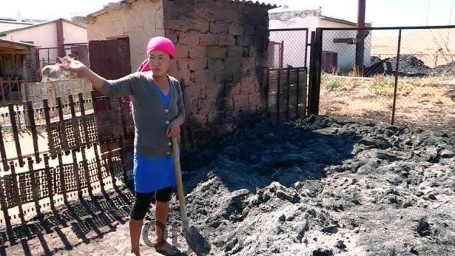 В Арысском районе ЮКО пожары уничтожают запасы кормов для скота