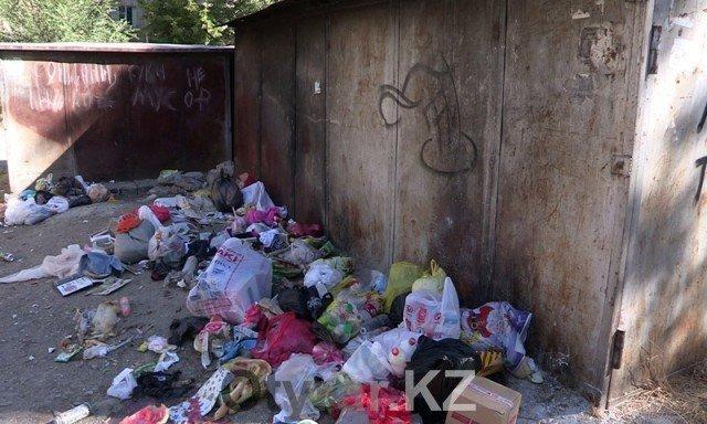 Власти Шымкента нашли способ бороться с теми, кто не доносит мусор до контейнеров