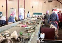 Мусорный завод Шымкента на сегодняшний день работает в штатном режиме
