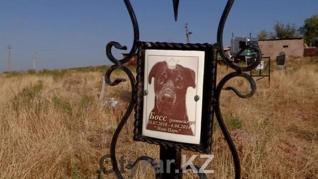 Кладбище домашних животных в Шымкенте