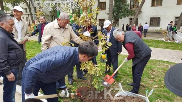 Празднование Дня города Шымкент стартовало общегородским субботником