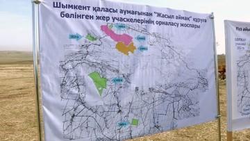 Более трех миллионов саженцев деревьев высадили вокруг Шымкента