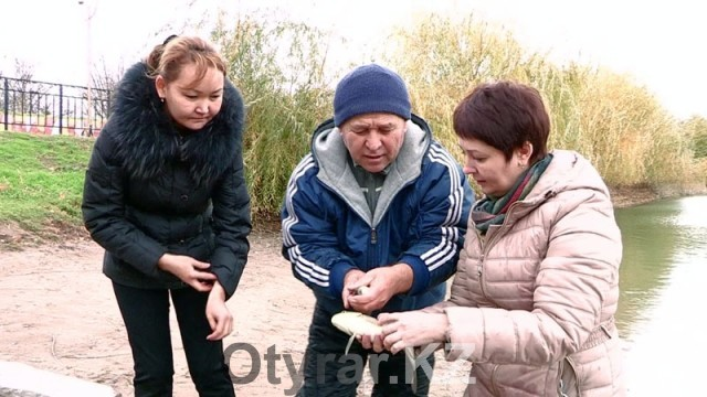 Зарыбление. Толстолобик, карп, сазан и белый амур поселились в Кошкар-ате и озере дендропарка