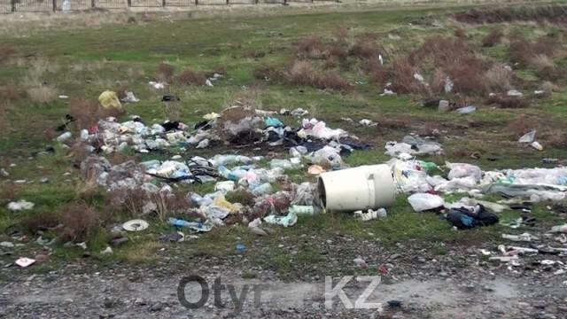 Неофициальное кладбище домашних животных в Шымкенте уничтожено. Мусор на кладбище