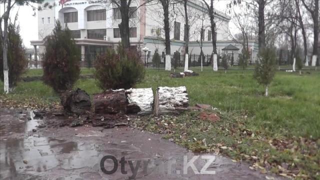 В шымкентском парке имени Абая беспощадно пилят деревья