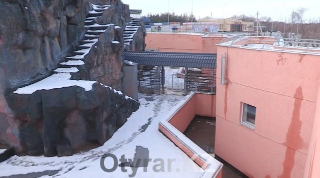 """Новый для шымкентского зоопарка объект """"Гора"""" признан непригодным к эксплуатации"""