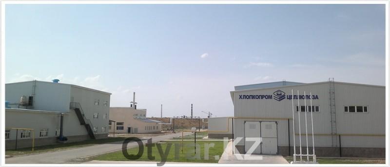 Предприятия в индустриальной зоне «Онтустик» нарщивают мощность