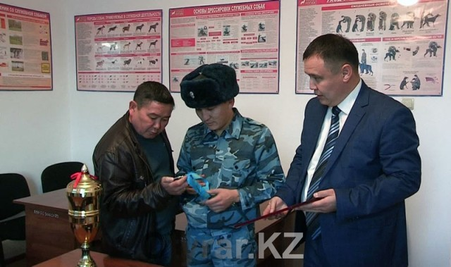 Кинологи ЮКО продемонстрировали навыки служебных собак на соревнованиях в Алматы