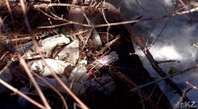 Вдоль водоема мусор