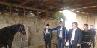 В Мактаарале задержаны скотокрады