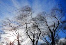 Штормовой ветер в ЮКО