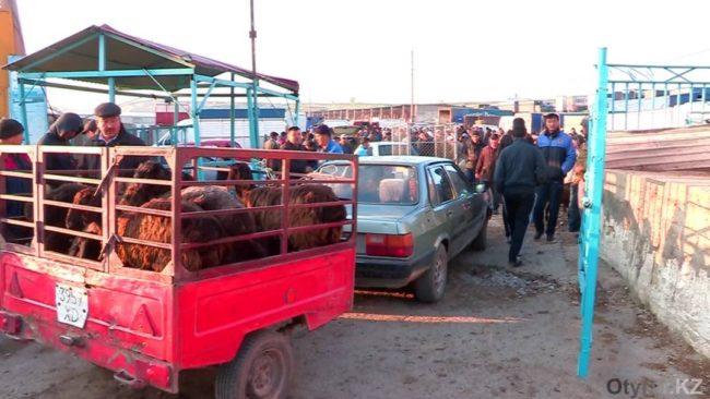 Скотный рынок Шымкента
