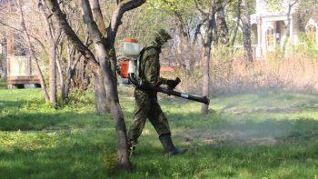 О мерах безопасности в связи с нашествием клещей предупреждают медики ЮКО
