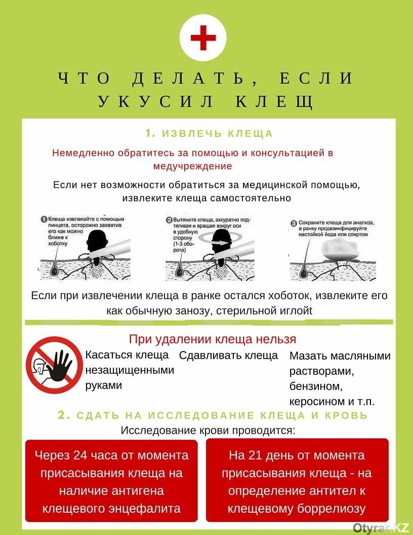 48 поликлиника московского района спб флюорография