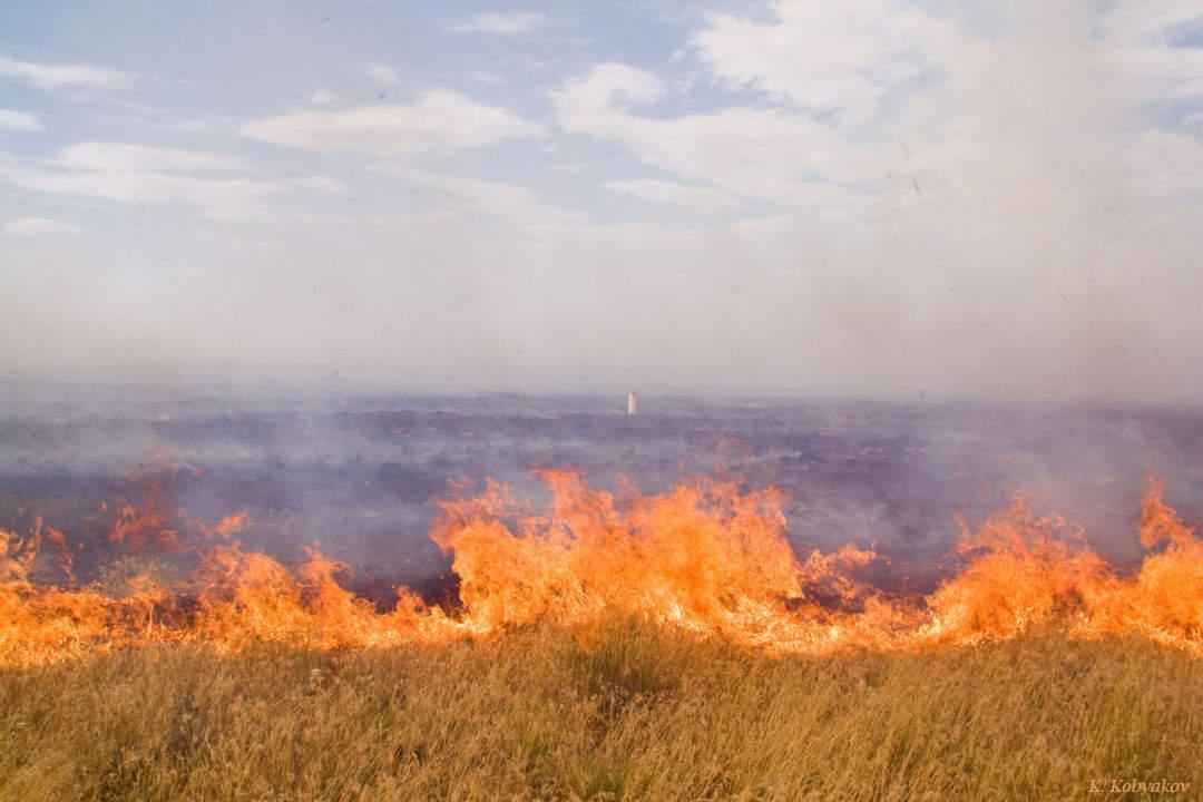 Закачать Реферат на тему степные пожары Реферат на тему степные пожары
