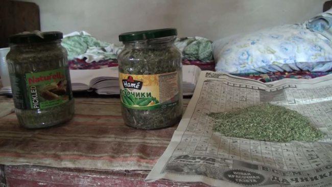 Наркотический кластер устроил в своем доме житель Шымкента