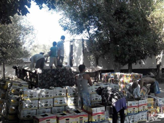 Дыни и арбузы ЮКО на экспорт
