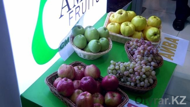 Сельхозвыставка в Шымкенте