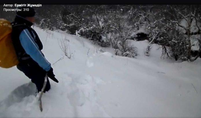 Загадочные следы в горах ЮКО обнаружили альпинисты