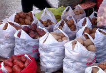 Шымкентские покупатели предпочитают павлодарский картофель