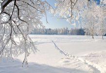 Красивая зима