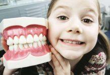 Как сохранить зубы целыми и здоровыми