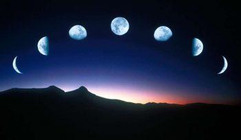 Советы огородникам и лунный посадочный календарь