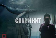 """""""Синий кит"""" добрался до Шымкента"""