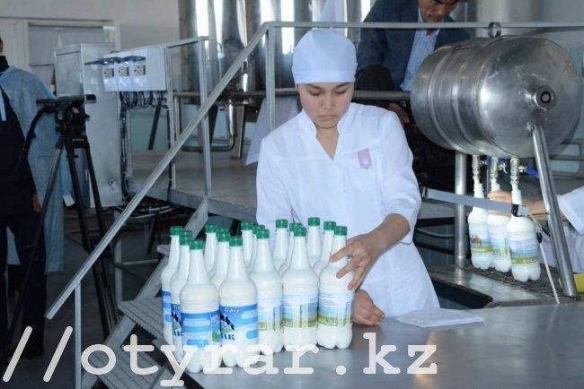 Йогурт из верблюжьего молока планируют выпускать в Сузаке