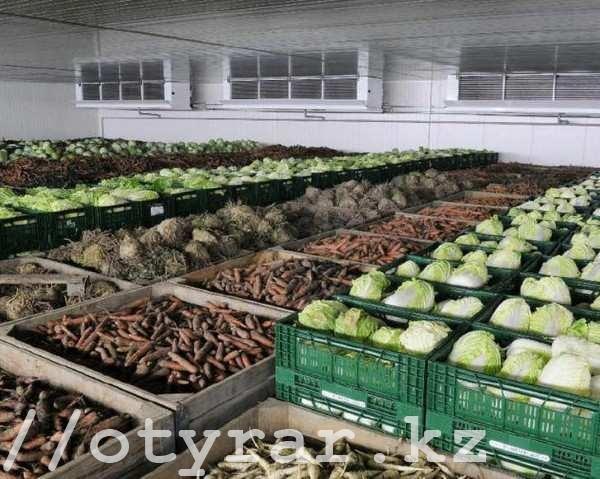 Овощи из стабфонда