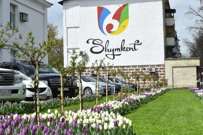 Тюльпаны в Шымкенте