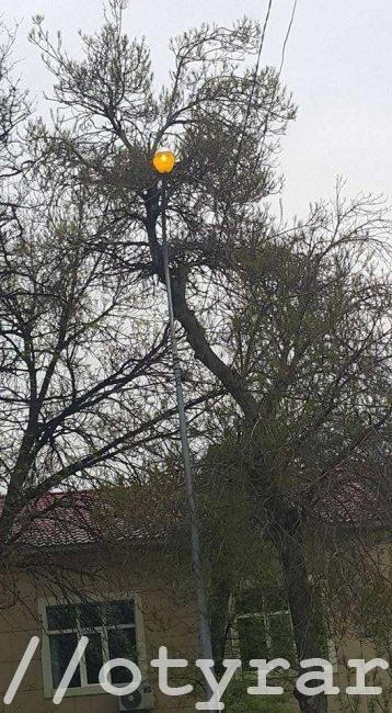В Шымкенте днем горят фонари