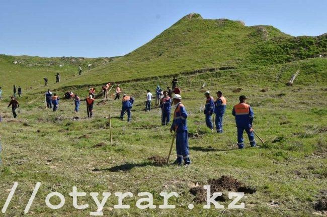 В Шымкенте появился новый парк