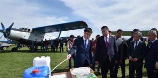 В ЮКО начались мероприятия по борьбе с саранчой