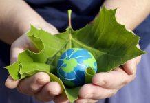 Руки держат лист и шар