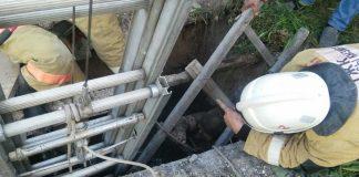 Спасатели спасли женщину из колодца