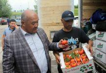Южные продукты повезли в Астану