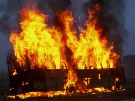 Пассажирский автобус сгорел на трассе в Жамбылской области