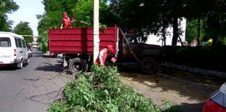 В Шымкенте начались работы по уборке дворов