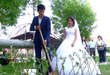 На аллее семьи молодожены высадили 240 ивушек