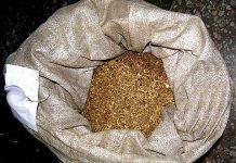 В Шымкенте начался судебный процесс над наркоторговцем