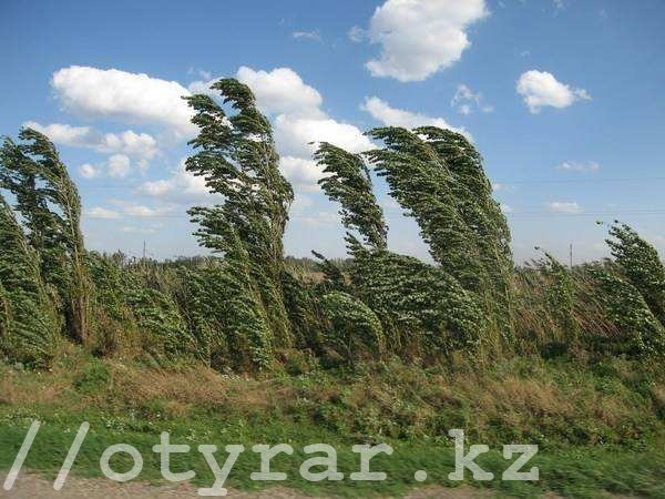 Ветер итуман обещают синоптики впятницу