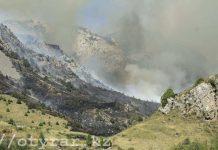 Пожар в горах ЮКО
