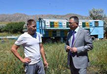 В ЮКО будет создан кооператив пчеловодов